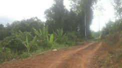 Tanah utk dijual Tambunan