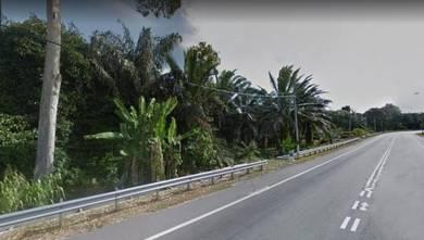 Development land at jalan sialang, near town area