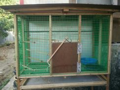 Sangkar burung for sale