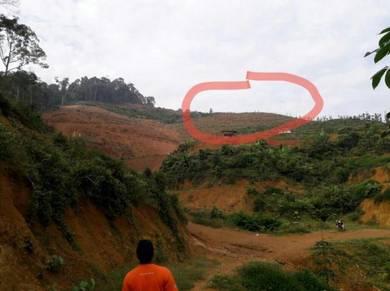 Tanah Pertanian 3 ekar di Kuala Pilah, Negeri Sembilan
