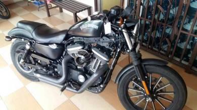 2014 - Harley Davidson Iron 883