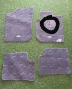 Carpet Mira ( VIVA ) / CARPET MOVE (MIRA)