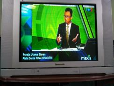 Panasonic TV- 29 inch Flat, Tau