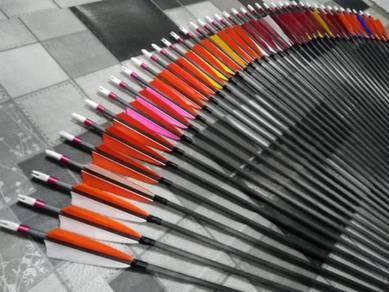 Archery - pure carbon arrow