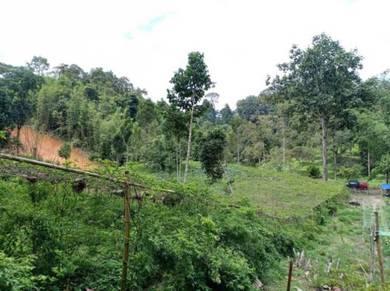 FREEHOLD & DEKAT SUNGAI | Tanah Pertanian 1 EKAR Janda Baik Sg Kuali