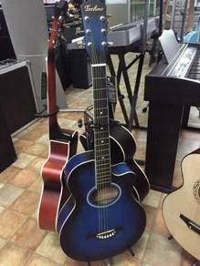 Techno T6600 Electric Acoustic Guitar With pickup