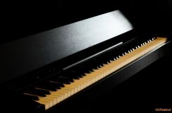 ROLAND Digital Piano F-140R