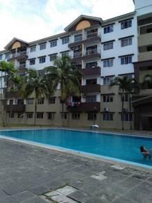 Bilik Harian Master Sri Kenari Apartment Tampoi Paradigm Johor Bahru