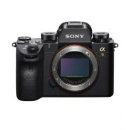 Sony Alpha A9 Mirrorless (Body Only)