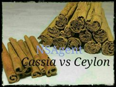 Ceylon cinnamon / kulit kayu manis ceylon