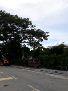Land at Tanjung Tokong 1 St Grade , Commercial tittle