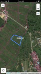 Tanah Sawah Padi 1.95 Acres Kg Biah Keningau