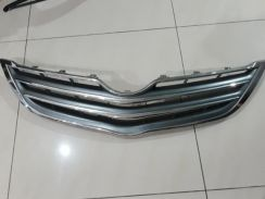 Grill vois 2011 front