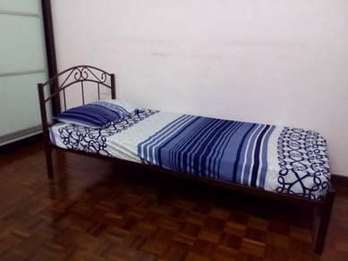 Good quality spring mattress + brass bed frame