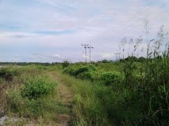 Looking for 20 acres land for agriculture plantati