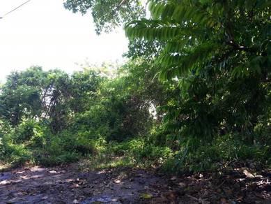 Main Road,1st Gred Land at Permatang Nibong, Butterworth