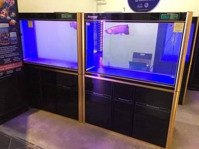 999 Gold Color aquarium for your arowana