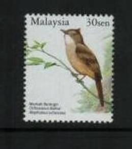 Mint Stamp Bird Definitive 30c Malaysia 2005