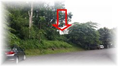 Leasehold Residential Land (BUKIT BERUANG)