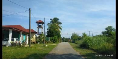 Lot suku ekar di Kg Bintang Setiu Terengganu
