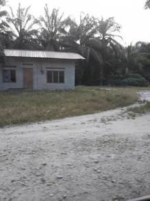Tanah sawit untuk dijual Taiping
