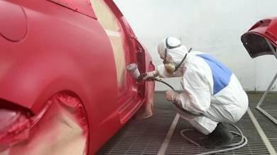 Repair paint painting cat spray sedan car mpv