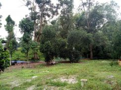 Mantin Bt8 N.Sembilan 2.6 acres orchard farm