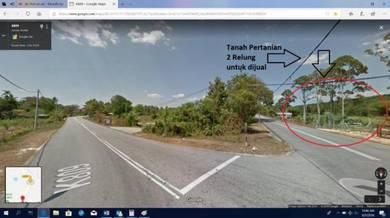 Tanah Kelapa Sawit Di Kedah Untuk Dijual (Harga Boleh Dirunding)