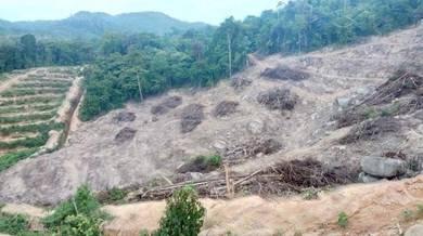 Tanah Pertanian Untuk Kebun Bukit Berteres