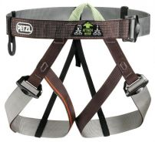 17rag half harness- petzl c29