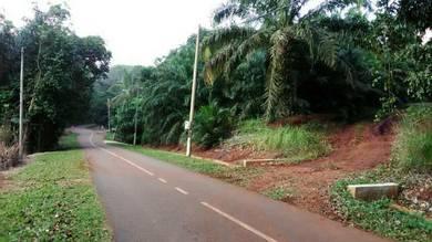 Tanah Kebun Sawit Jelebu N Sembilan