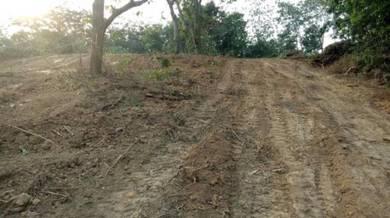 Tanah Mcl Area Masjid Tanah Kg Solok Budi Durian Daun