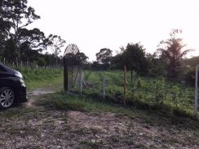 Tanah Pertanian 3 ekar di Ayer Hitam Batu Pahat Johor