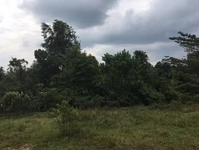 Tanah Lot di Machang
