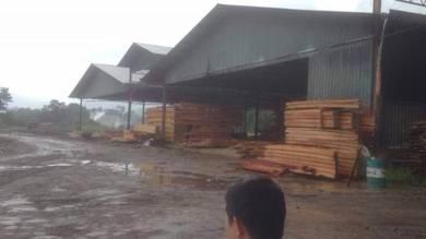 Tanah land kayu balak timber of malaysia