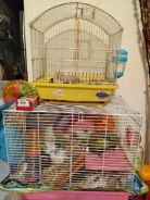 Hamster plus cages