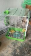 Cage for baby sg