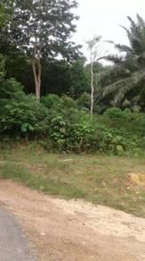 Tanah Di Kampung Kepis Baru
