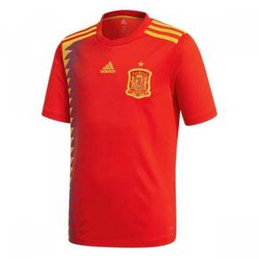 Spain World Cup (2018)