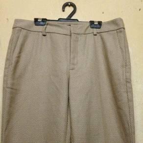 Zara Basic Ladies Pants
