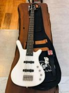 5 Strings Bass Guitar