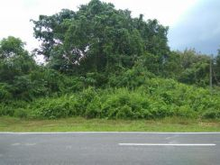 29th Mile Jalan Palah Jalan Kuching Serian Mixed Zone Land for sales