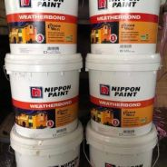 Nippon Paint 5 years protection