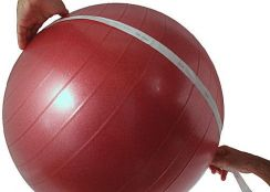 Fitness Equipment Gym Ball 55CM