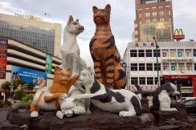 3D2N Kuching, Sarawak | AMI Travel