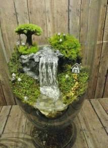 Mini Waterfall and Mini Garden