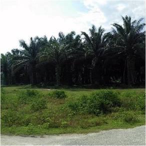 Mukim of Teja, District of Kampar (DC10044544)