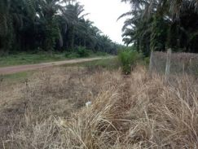 Tanah Leasehold Area Melaka Pindah