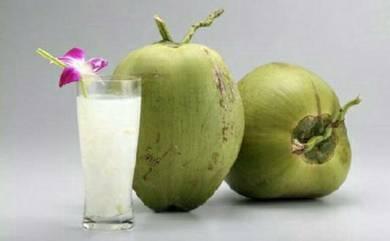 Coconut fresh,kelapa muda