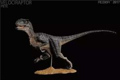 Rebor velociraptor Pete Jurassic World